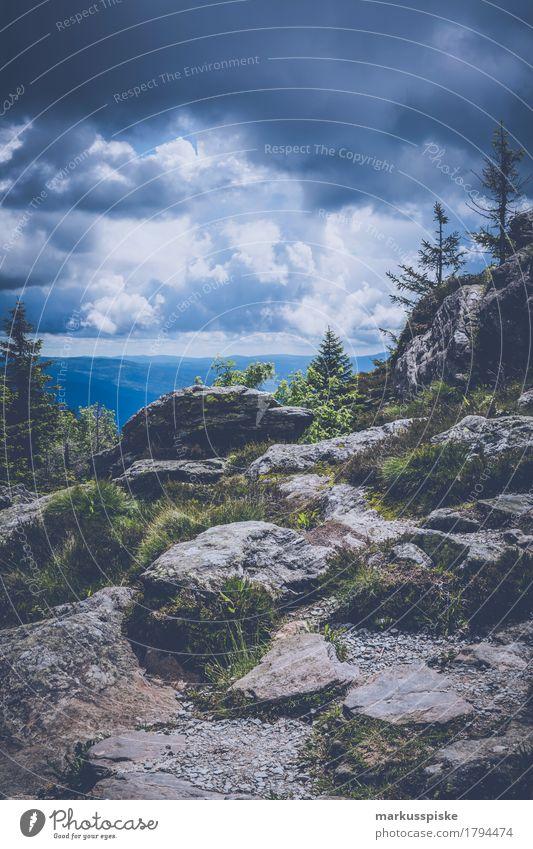 grosser arber bayerischer wald Natur Ferien & Urlaub & Reisen Sommer Landschaft Erholung ruhig Ferne Berge u. Gebirge Umwelt Freiheit Felsen Tourismus