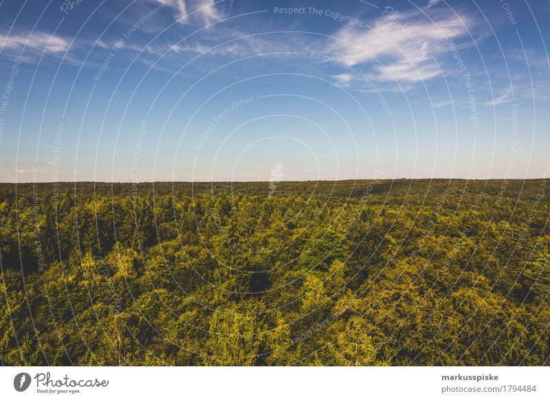 baumwipfelpfad ebrach Himmel Natur Ferien & Urlaub & Reisen Pflanze Sommer Baum Landschaft Erholung Wolken ruhig Ferne Wald Berge u. Gebirge Umwelt Freiheit