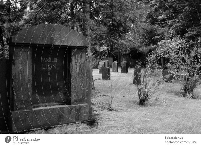 Familie Lion Friedhof Grabstein historisch Schwarzweißfoto Tod