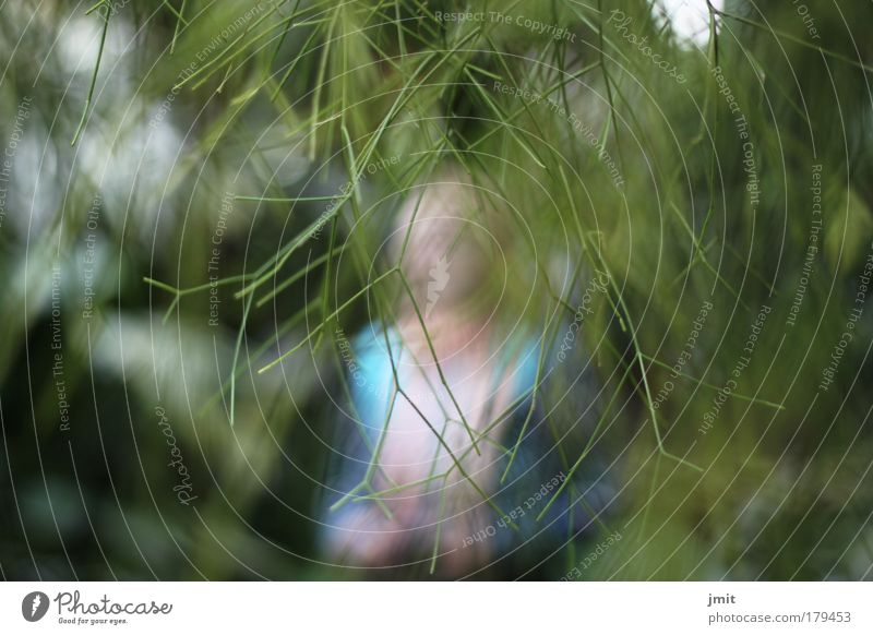 der richtige fokus Mensch Frau Natur blau Pflanze grün Sommer Erwachsene Umwelt Park Perspektive Ausflug Schönes Wetter Netzwerk