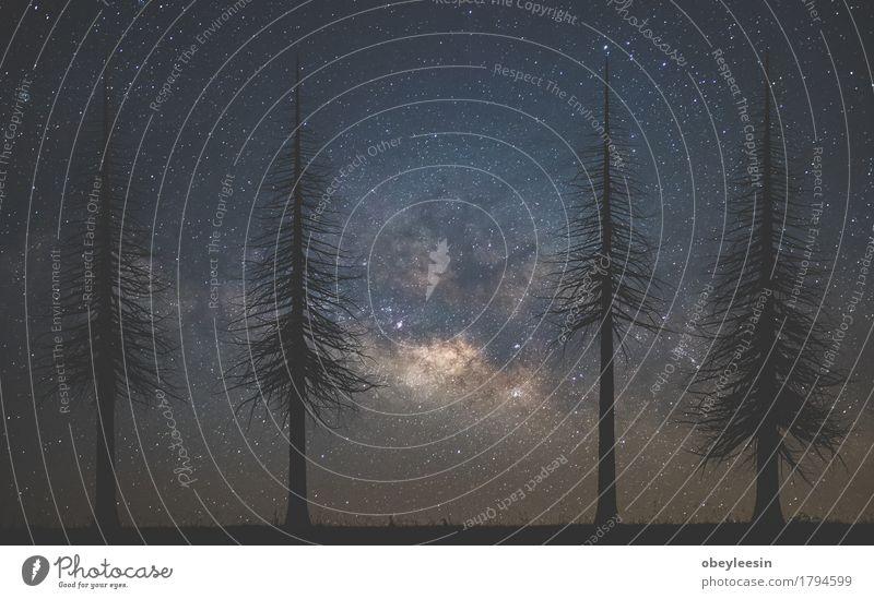 Milchstraße Ferien & Urlaub & Reisen Abenteuer Umwelt Himmel Nachthimmel Stern Außenaufnahme Menschenleer Silhouette