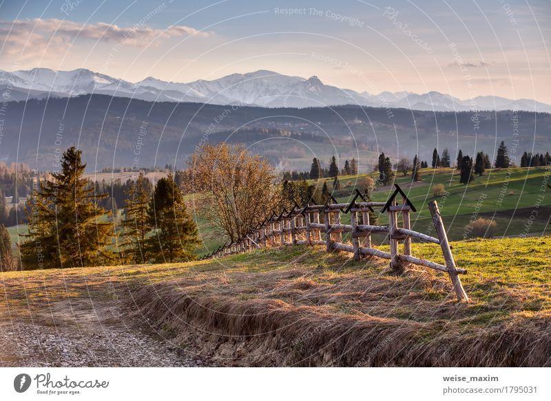 Frühlingslandschaft in Tatras-Bergen Himmel Natur Ferien & Urlaub & Reisen Sommer grün schön Baum Blume Landschaft Wolken Ferne Wald Berge u. Gebirge gelb Blüte