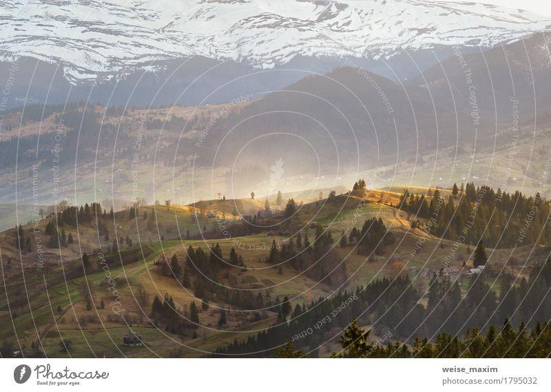 Abendlicht im Frühjahr Karpaten Ferien & Urlaub & Reisen grün Baum Landschaft Wolken Haus Wald Berge u. Gebirge gelb Frühling Wiese natürlich Schnee Felsen