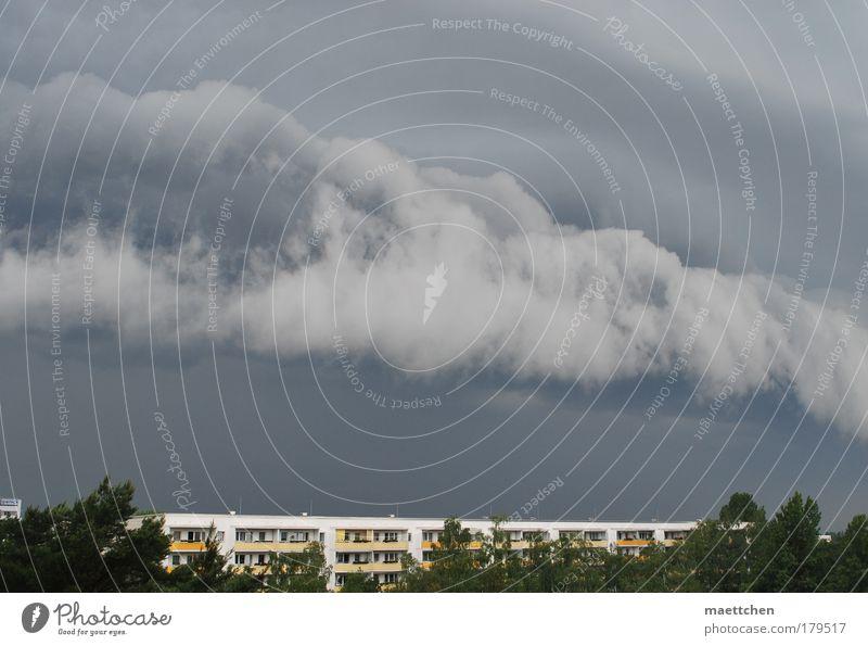 vor dem Gewitter Himmel Baum Sommer Haus Wetter Umwelt bedrohlich Sturm Unwetter schlechtes Wetter Gewitterwolken zusammenbrauen
