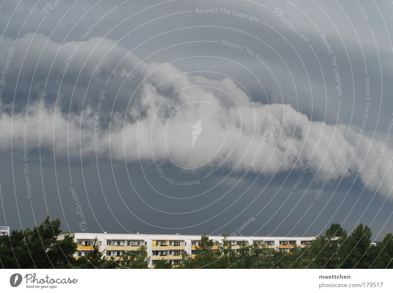 vor dem Gewitter Himmel Baum Sommer Haus Wetter Umwelt bedrohlich Sturm Gewitter Unwetter schlechtes Wetter Gewitterwolken zusammenbrauen