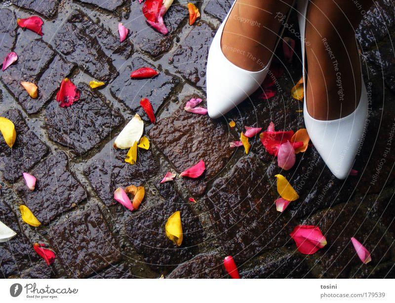 Der große Tag Mensch Jugendliche weiß schön rot Freude gelb feminin Glück Blüte Paar Fuß Zufriedenheit Schuhe nass Hochzeit