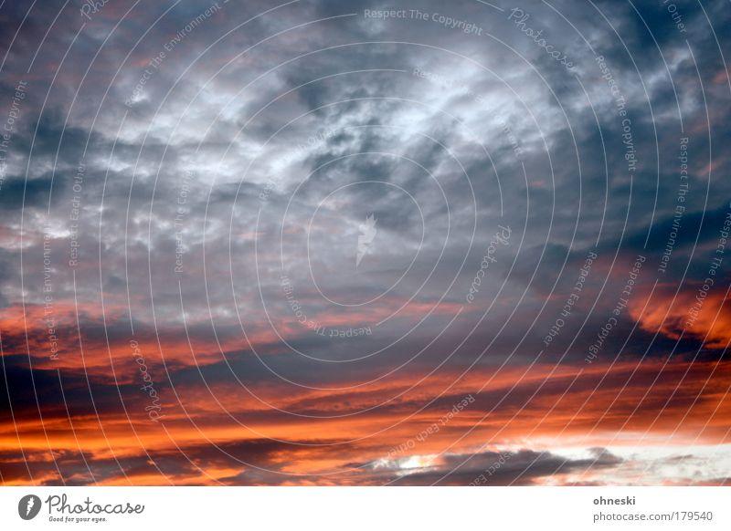 Plätzchen backen Farbfoto Außenaufnahme Dämmerung Kontrast Sonnenaufgang Sonnenuntergang Umwelt Natur Luft Himmel Wolken Gewitterwolken Herbst Klima Wetter
