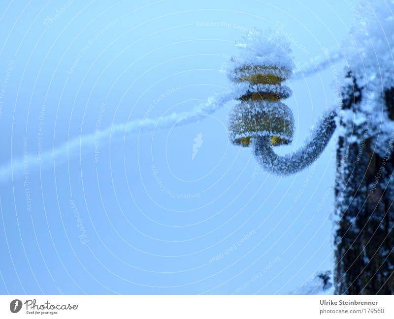 Eiskristalle auf dem Isolator eines Weidezauns Farbfoto Außenaufnahme Menschenleer Textfreiraum unten Tag Kabel Energiewirtschaft Winter Frost Feld Nutztier