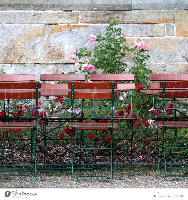 In kleiner Runde Stuhl Tisch Rose Mauer Sandstein Kies Erholung Pause Café nebeneinander umgänglich Menschenleer begegnen Tag