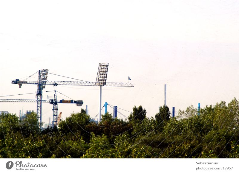 MSV Arena (Bauphase) Baum Kran Stadion Duisburg Flutlicht Ruhrgebiet Fußballstadion