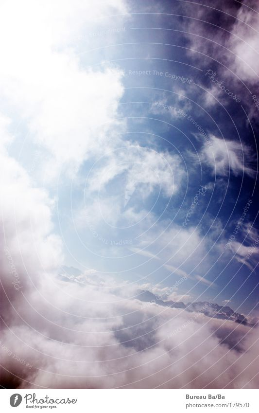 Wolkenspaziergang weiß blau Berge u. Gebirge Freiheit Flugzeug fliegen Schweiz Berner Oberland