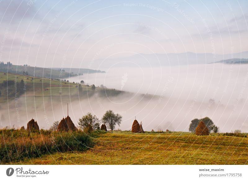 Nebeliger Morgen des Herbstes September in den Bergen Himmel Natur Ferien & Urlaub & Reisen Sommer grün weiß Baum Landschaft Wolken Ferne Berge u. Gebirge