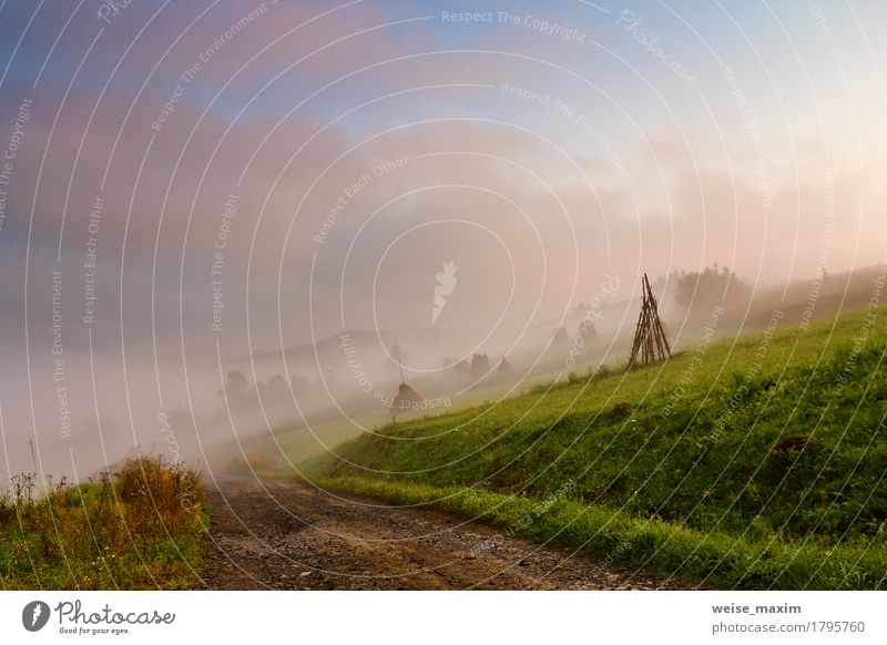Himmel Natur Ferien & Urlaub & Reisen blau grün weiß Baum Landschaft Wolken Ferne Wald Berge u. Gebirge Umwelt Straße Wiese Herbst