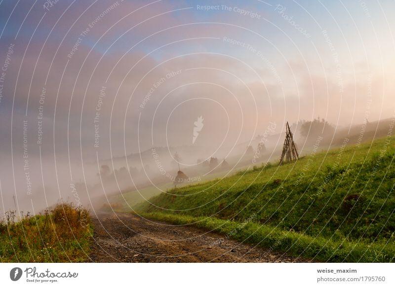 Nebeliger Morgen des Herbstes September in den Bergen Himmel Natur Ferien & Urlaub & Reisen blau grün weiß Baum Landschaft Wolken Ferne Wald Berge u. Gebirge