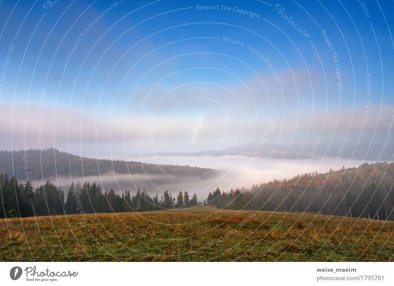 Nebeliger Morgen des Herbstes September in den Bergen Himmel Natur Ferien & Urlaub & Reisen blau grün schön weiß Baum Landschaft Wolken Ferne Wald