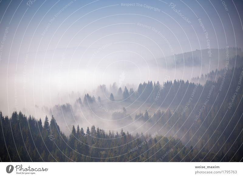 Nebeliger Morgen des Herbstes September in den Bergen Himmel Natur Ferien & Urlaub & Reisen blau Sommer weiß Baum Landschaft Wolken Ferne Wald Berge u. Gebirge