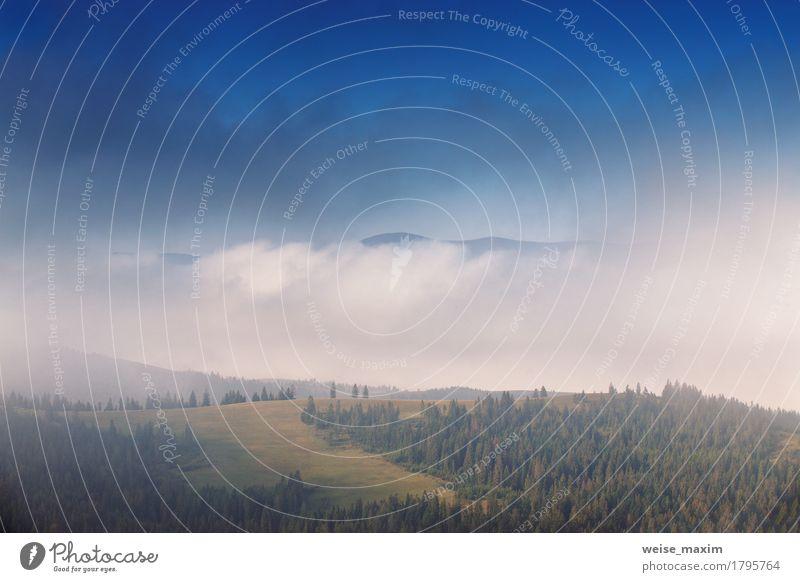 Nebeliger Morgen des Herbstes September in den Bergen schön Ferien & Urlaub & Reisen Tourismus Ausflug Abenteuer Ferne Sommer Schnee Berge u. Gebirge Umwelt