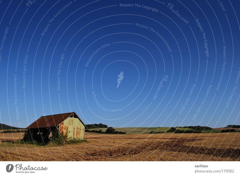 scheu ?? ne !! alt Himmel blau ruhig Einsamkeit Herbst Freiheit Landschaft Zufriedenheit braun Feld Horizont Erde Sträucher Hügel Landwirtschaft
