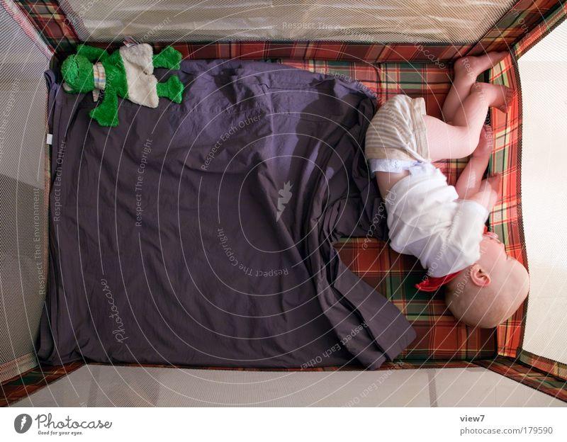 Schlafkultur Mensch Kind Mädchen ruhig Erholung oben Glück träumen Innenarchitektur Kindheit Zufriedenheit Raum wild liegen schlafen authentisch