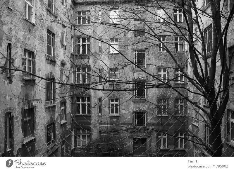 Hinterhof Berlin Stadt Fenster Senior Fassade Hauptstadt Stadtzentrum Altstadt stagnierend Hof Prenzlauer Berg