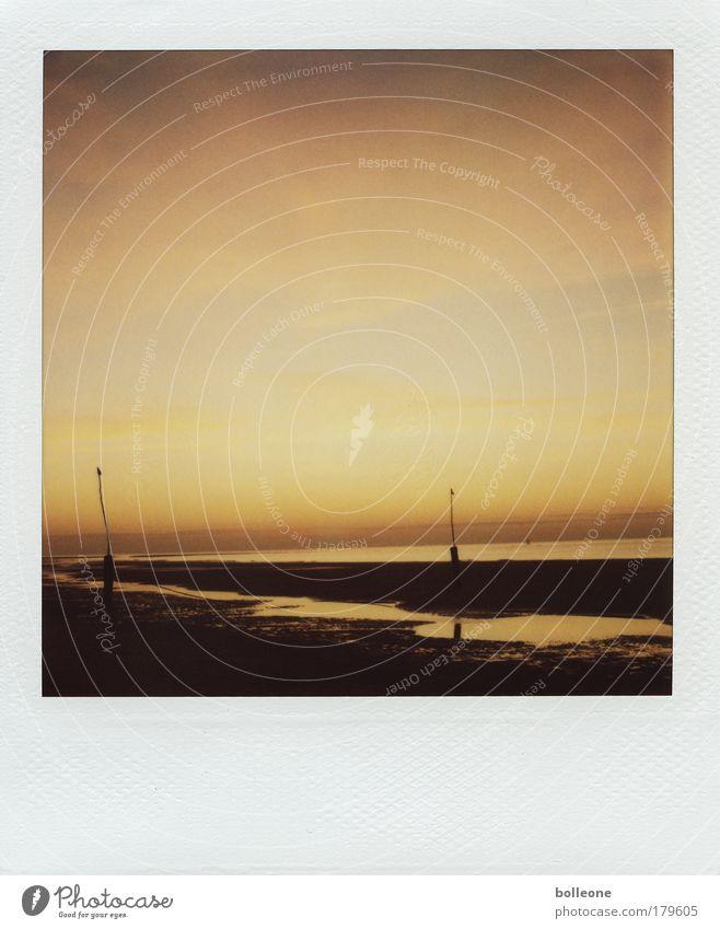 Sche... auf Hawaii Farbfoto Gedeckte Farben Außenaufnahme Polaroid Menschenleer Textfreiraum oben Dämmerung Licht Schatten Kontrast Silhouette