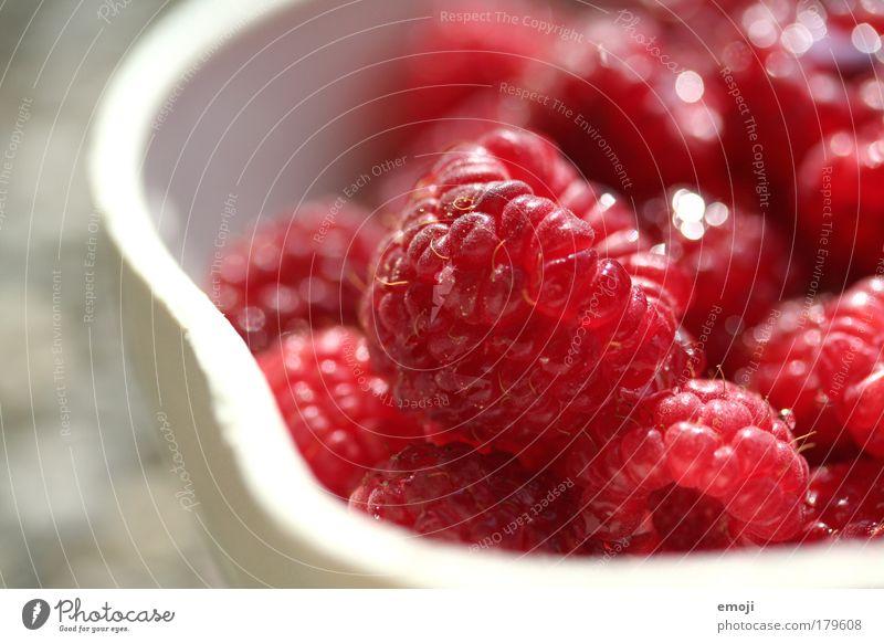 frisch vom Garten Natur weiß rot Ernährung Gesundheit Frucht frisch natürlich Teilung Ernte Schalen & Schüsseln Bioprodukte Himbeeren fruchtig Landwirtschaft pflücken