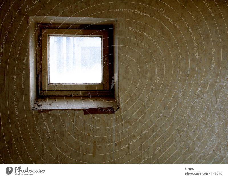 Letzte Blicke Fenster dunkel Tapete alt Sanieren verwohnt verlassen Atelier Loch Nostalgie Innenaufnahme Schatten Fensterbrett Option Denkmalschutz Neigung