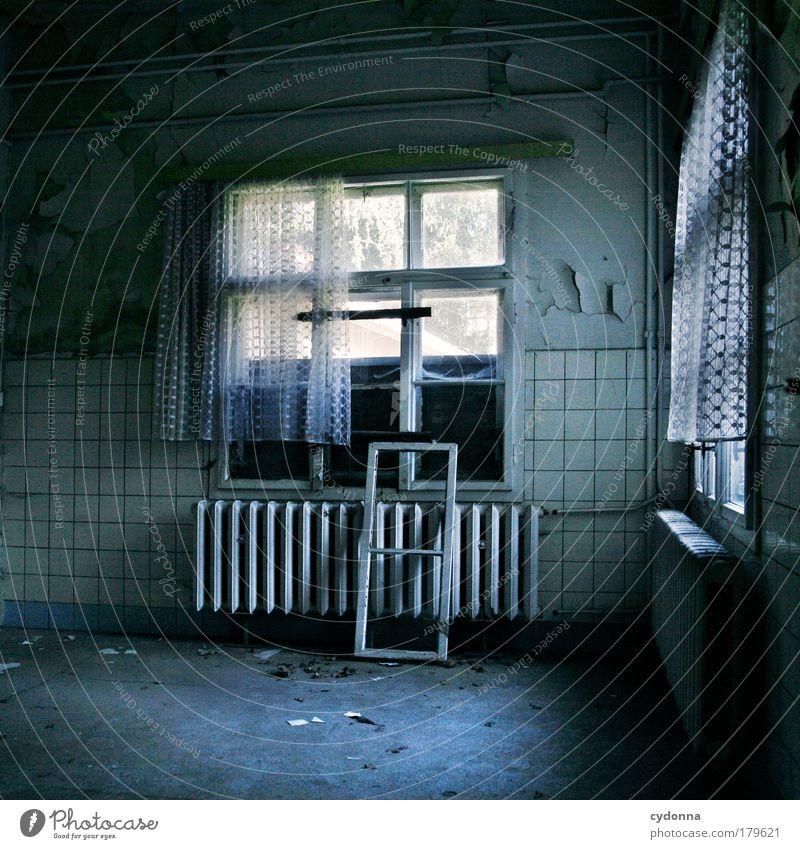 Küchendienst ruhig Haus Einsamkeit Leben dunkel Wand Tod Fenster träumen Traurigkeit Mauer Zeit ästhetisch Wandel & Veränderung Häusliches Leben