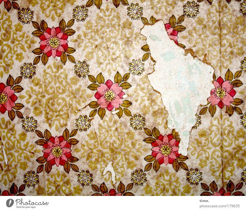 Zeitzeugin Tapete Blume Riss Knospen Fleck Putz kaputt kleben Klebstoff alt Nostalgie Quadrat Zeichnung gemalt Druck Struktur Wand Wohnung Raum Wohnzimmer