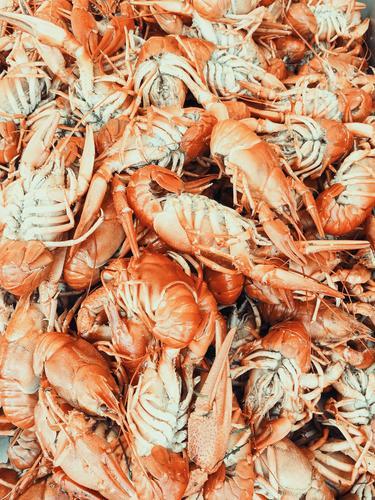 Hummer und Garnelen zum Verkauf im Fischmarkt Lebensmittel Fleisch Meeresfrüchte Ernährung Essen Mittagessen Abendessen Bioprodukte Diät Gesunde Ernährung Tier