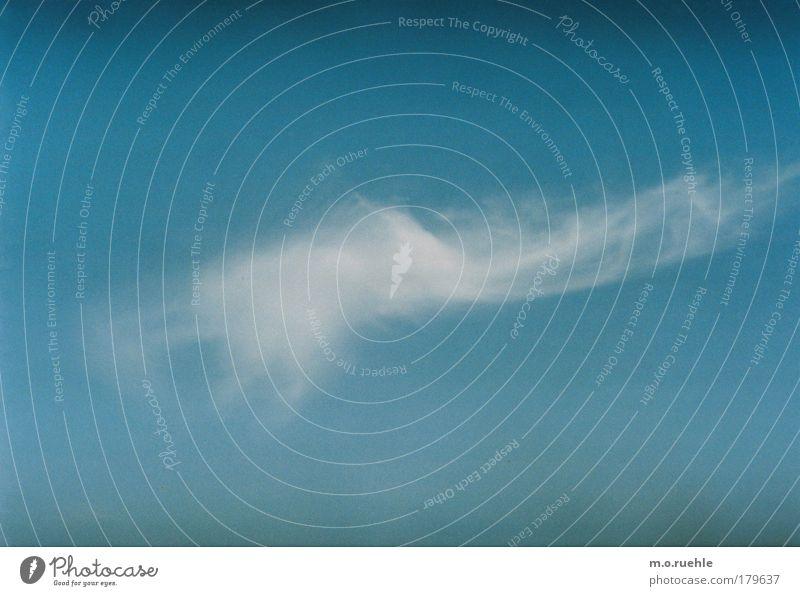 atempoem Natur Himmel weiß blau Ferien & Urlaub & Reisen Wolken Ferne träumen Traurigkeit Luft Stimmung Wind Umwelt Wandel & Veränderung rein Vergänglichkeit