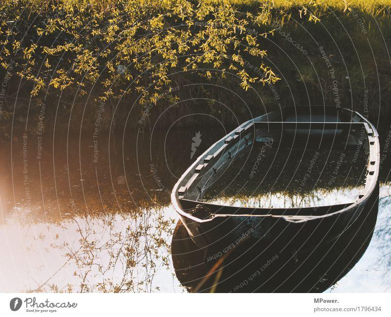 fischerboot Natur Herbst Pflanze Seeufer Flussufer nass Wasserfahrzeug Spree Spreewald untergehen Wasseroberfläche Fischerboot Baum alt kaputt Farbfoto