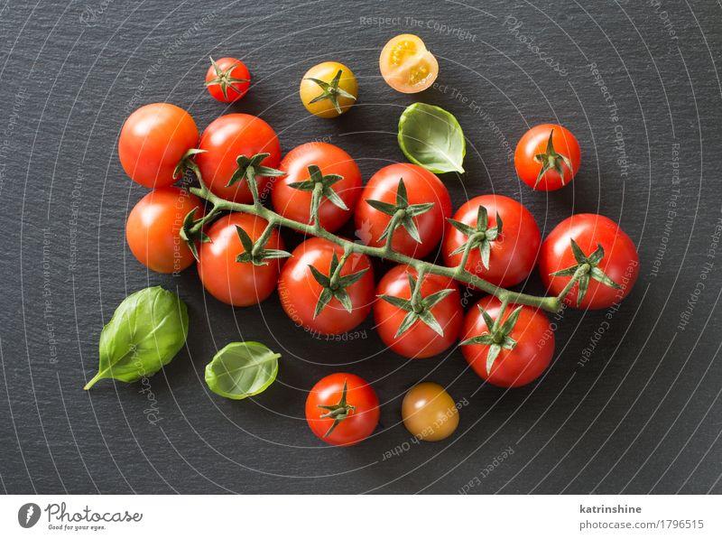 Frische Kirschtomaten und Basilikum Gemüse Kräuter & Gewürze Vegetarische Ernährung Diät dunkel frisch Gesundheit natürlich grün rot Tradition Essen zubereiten