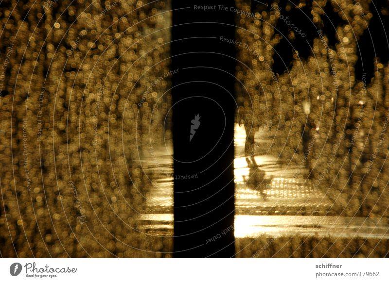 Goldregen Straße Regen gehen Wetter Wassertropfen gold Surrealismus Fußgänger Heftpflaster