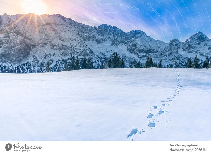 Berggipfel im Winter Himmel blau weiß Sonne Landschaft ruhig Freude Berge u. Gebirge kalt Schnee Freiheit Wetter frisch Europa Fußweg