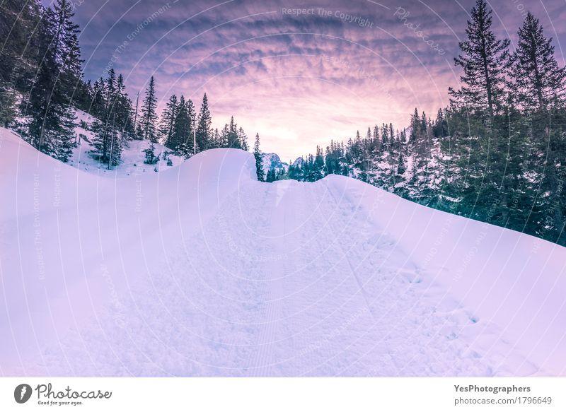 Bergstraße durch Berge von Schnee Ferien & Urlaub & Reisen Ausflug Winter Berge u. Gebirge Landschaft Himmel Wetter Eis Frost Baum Wald Alpen