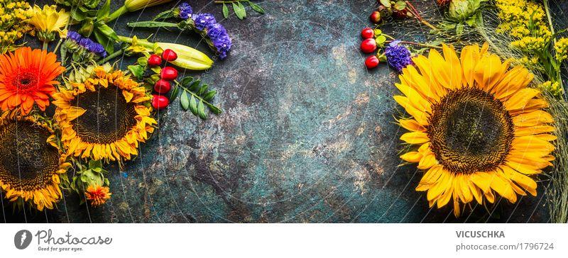 Blumendekoration mit Sonnenblumen und Herbstbluten Stil Design Dekoration & Verzierung Natur Pflanze Blatt Blüte Fahne gelb Grunge altehrwürdig herbstlich