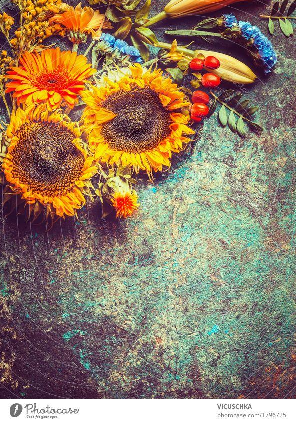 Herbstliche Sonnenblumen Stil Design Sommer Dekoration & Verzierung Natur Pflanze Blume Blatt Blüte gelb Hintergrundbild Composing altehrwürdig Blumenstrauß