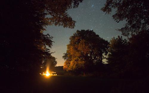 Lagerfeuer unter den Sternen Sommer Baum Landschaft Wald dunkel Wärme Freiheit orange Zusammensein Ausflug Abenteuer Feuer Wolkenloser Himmel Lichtspiel