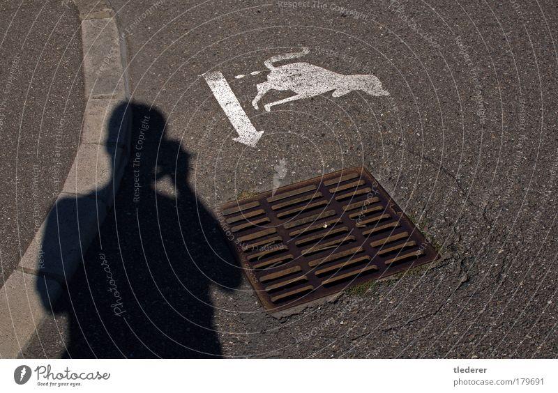 Die Lösung eines Problems Hund Stadt Tier Umwelt Straße Graffiti grau Stein gehen dreckig Schilder & Markierungen Ordnung Sauberkeit Zeichen Dorf Wut