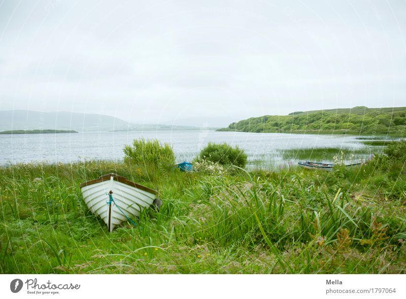 Warten Freizeit & Hobby Angeln Ausflug Umwelt Natur Landschaft Gras Seeufer Bootsfahrt Fischerboot Ruderboot liegen Einsamkeit Erholung Idylle Pause ruhig
