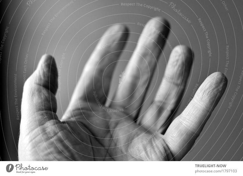 Sag' ich doch... Männlicher Senior Mann Leben Hand Finger 1 Mensch 60 und älter Bewegung sprechen Kommunizieren authentisch einfach Freundlichkeit nah seriös