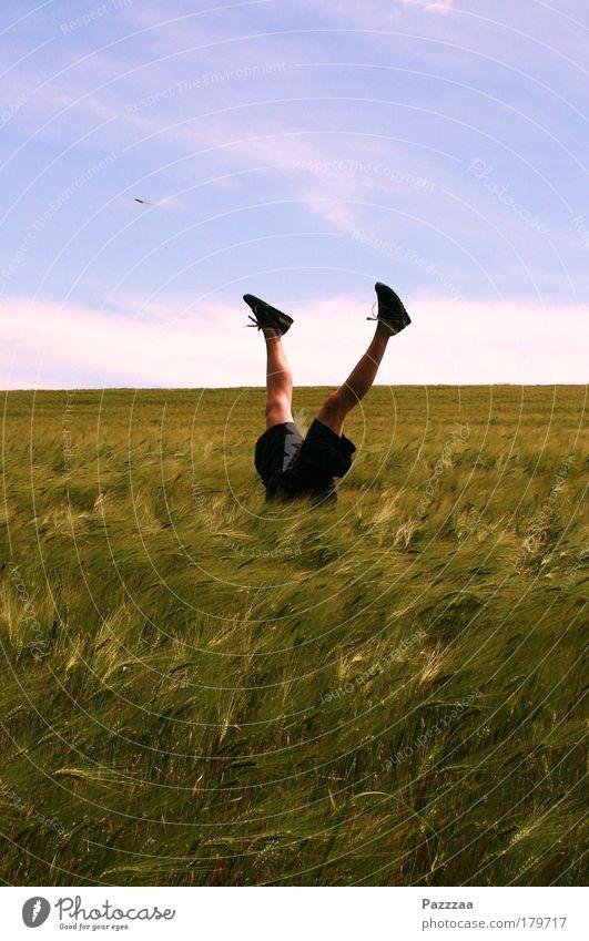 Ehemaliger Fallschirmspringer Himmel Jugendliche grün Sommer Freude Erwachsene Glück Beine 18-30 Jahre Feld verrückt Abenteuer fallen Getreide Landwirt