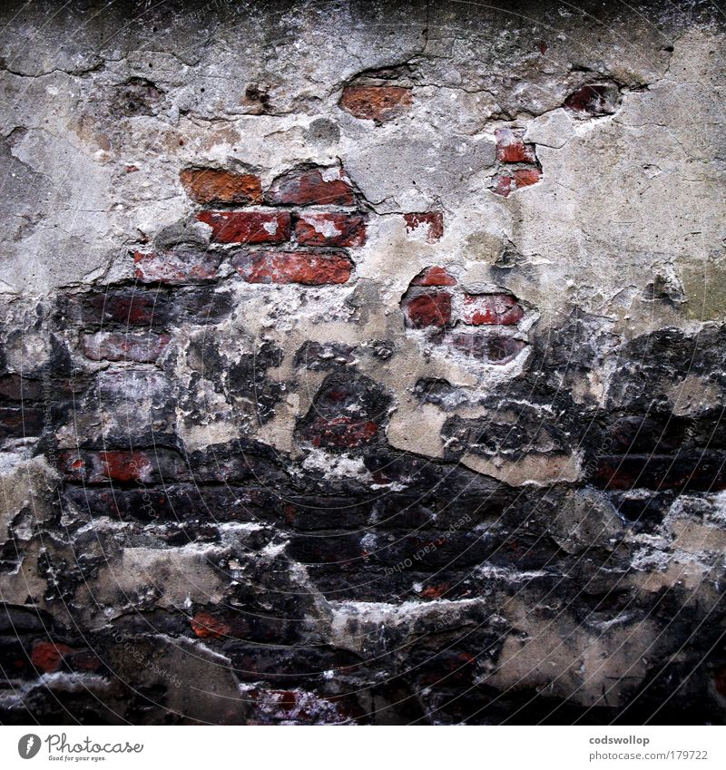 personal isolation Farbfoto Außenaufnahme Totale Häusliches Leben Mauer Wand Fassade alt Armut Einsamkeit Trennung Backstein Putzfassade Fuge Mörtel gefangen