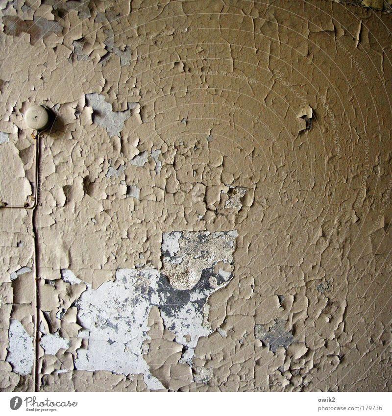 Offenes Denkmal Bauwerk Gebäude Mauer Wand Putz Farbe Ölsockel Anstrich verfallen schrundig Kabel Verteilerdose Sehenswürdigkeit alt historisch retro grau