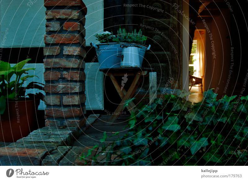 wohnzimmerkonzert Pflanze Haus Leben Garten Wohnung Lifestyle ästhetisch Stuhl Dekoration & Verzierung Häusliches Leben Idylle Innenarchitektur Backstein Möbel