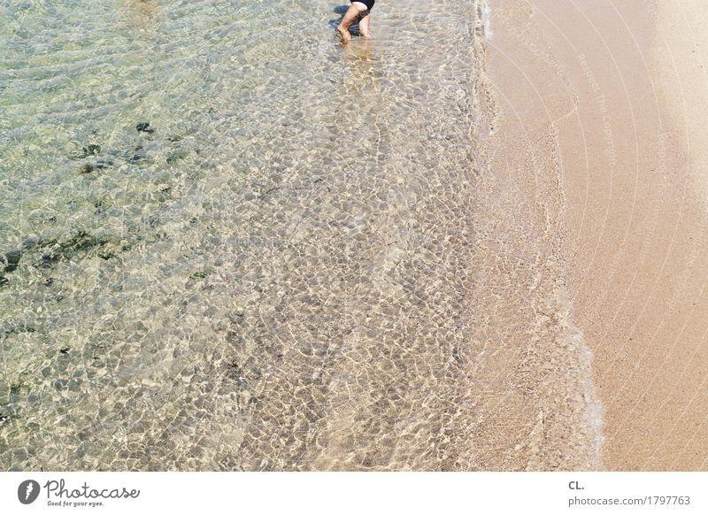 badetag Mensch Natur Ferien & Urlaub & Reisen Sommer Meer Ferne Strand Erwachsene Umwelt kalt Wärme Leben Küste Beine Gesundheit Freiheit