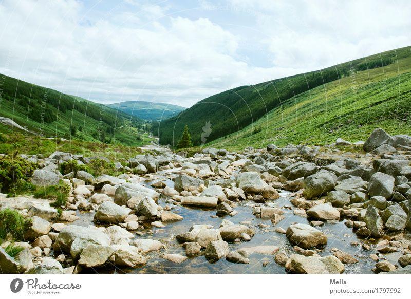 Familie Geröllheimer Umwelt Natur Landschaft Felsen Schlucht Bach Fluss Geröllfeld Stein Republik Irland natürlich Perspektive Hügel abwärts Wildbach Tal