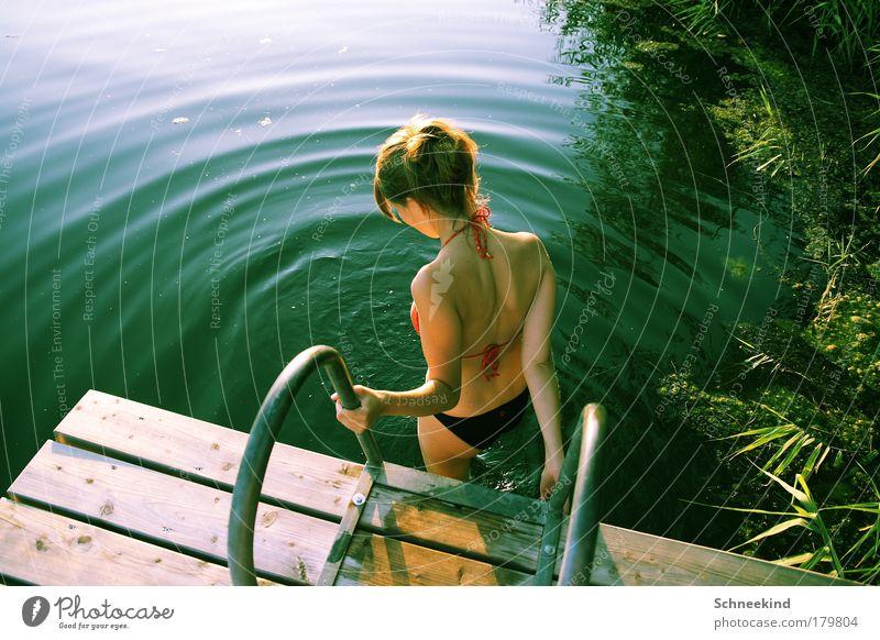 Badelust Frau Mensch Natur Jugendliche Wasser schön Sonne Sommer ruhig Erholung feminin Gras Glück See Landschaft