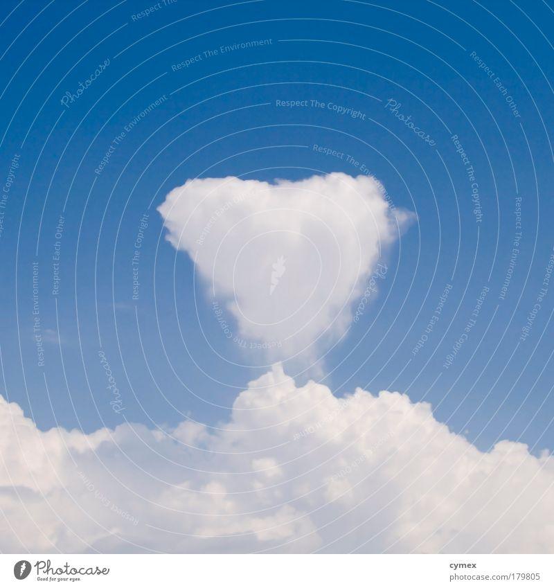 Schönwetterwolke Himmel weiß blau Sommer Liebe Wolken Gefühle Glück Luft Herz Wetter Umwelt Romantik Symbole & Metaphern Urelemente Schönes Wetter